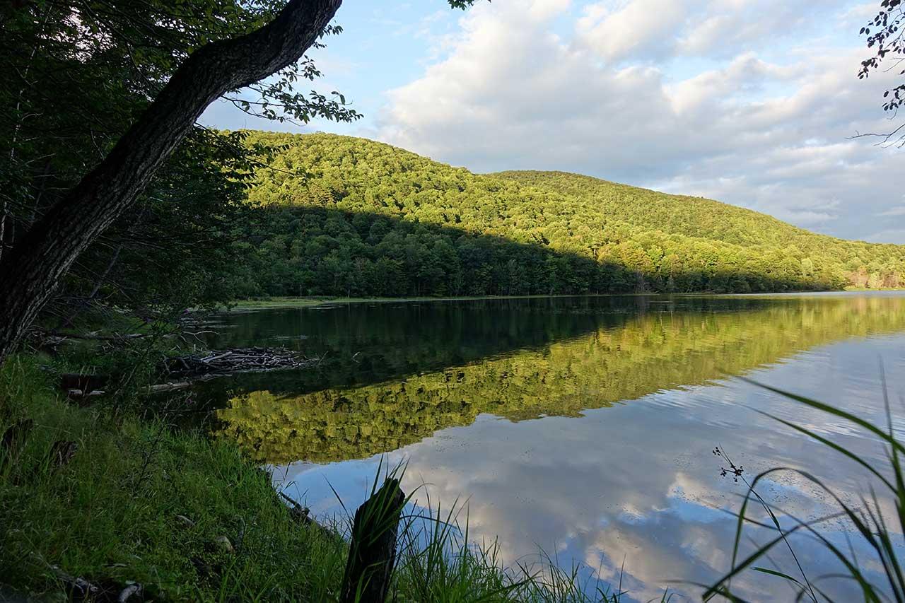 Le lac Hertel depuis une berge en été, les boisés entourant le lac sont ensoleillés et se reflètent dans le lac
