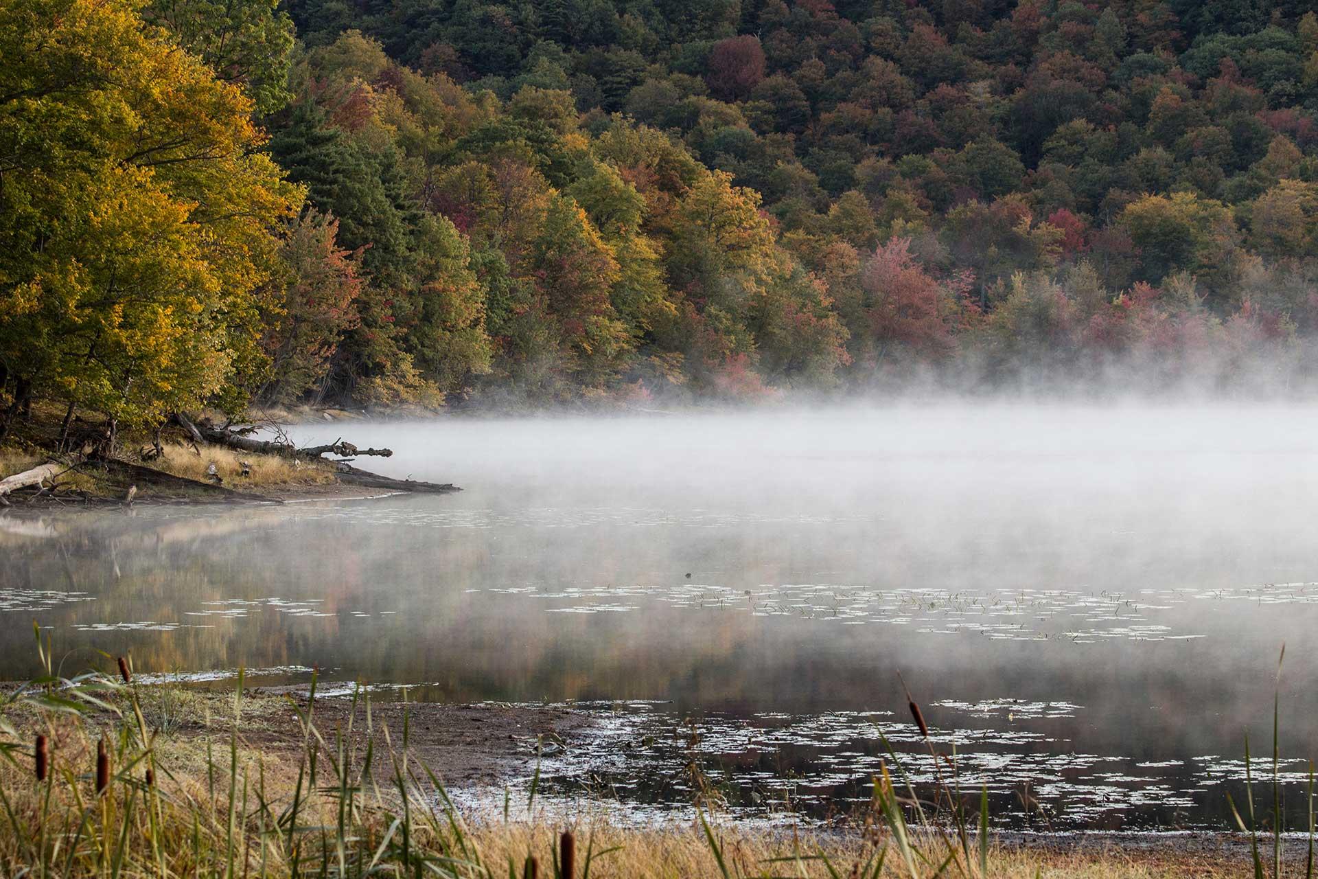 Le lac Hertel embrumé depuis une berge, entouré de boisés en automne