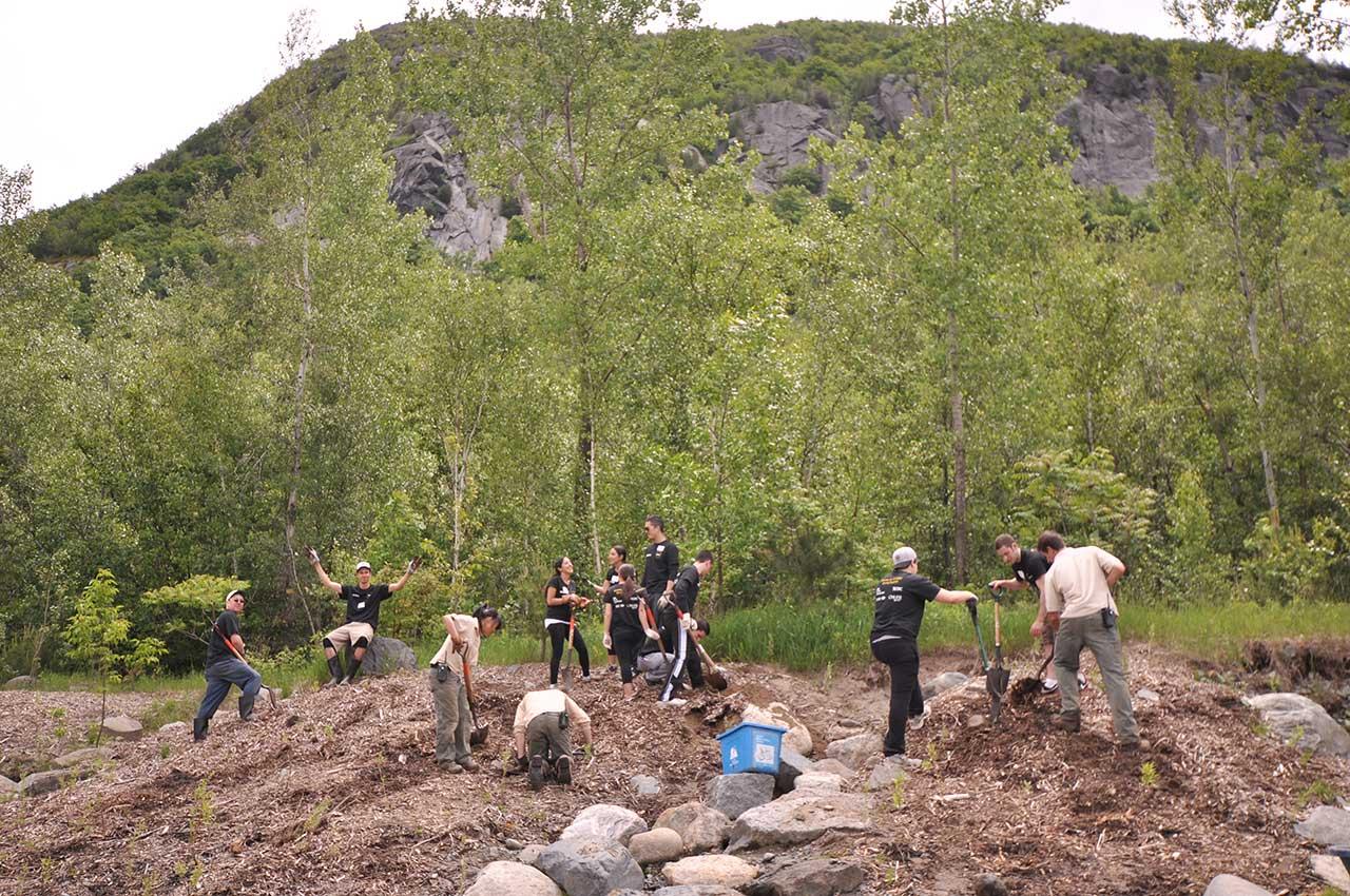Treize personnes lors d'une activité bénévole de plantations d'arbres, secteur entouré de boisés, vue sur la falaise du mont Saint-Hilaire