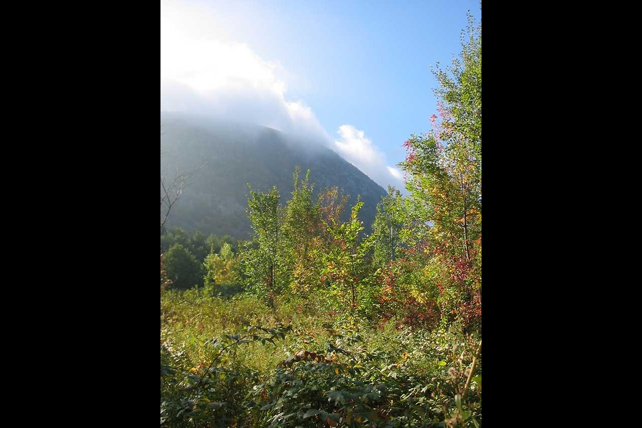 Boisé au pied de la montagne en automne, vue sur un des flancs du mont Saint-Hilaire