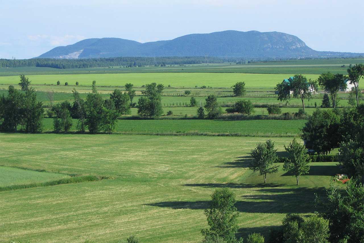 Plaines agricoles de Saint-Charles-sur-Richelieu, vue sur le mont Saint-Hilaire