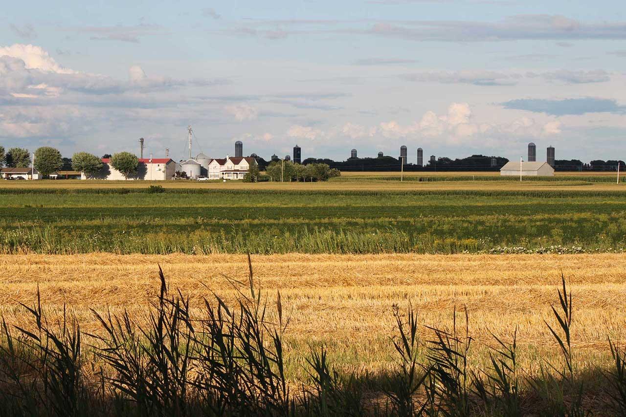 Alternance horizontale de champs de blé et de maïs, fermes et nombreux silos en arrière-plan