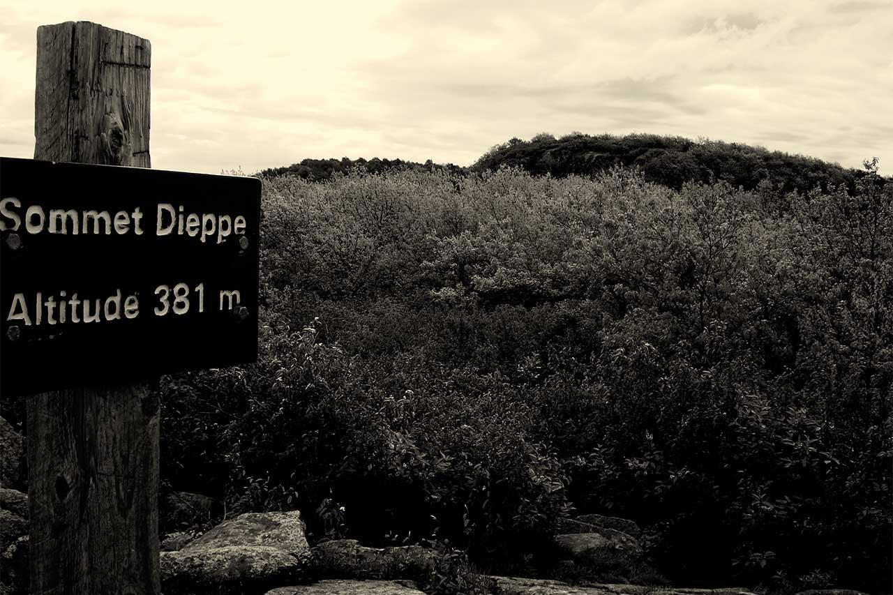 Photographie en noir et blanc de la végétation au sommet Dieppe et panneau indiquant « Sommet Dieppe, altitude 381 m »