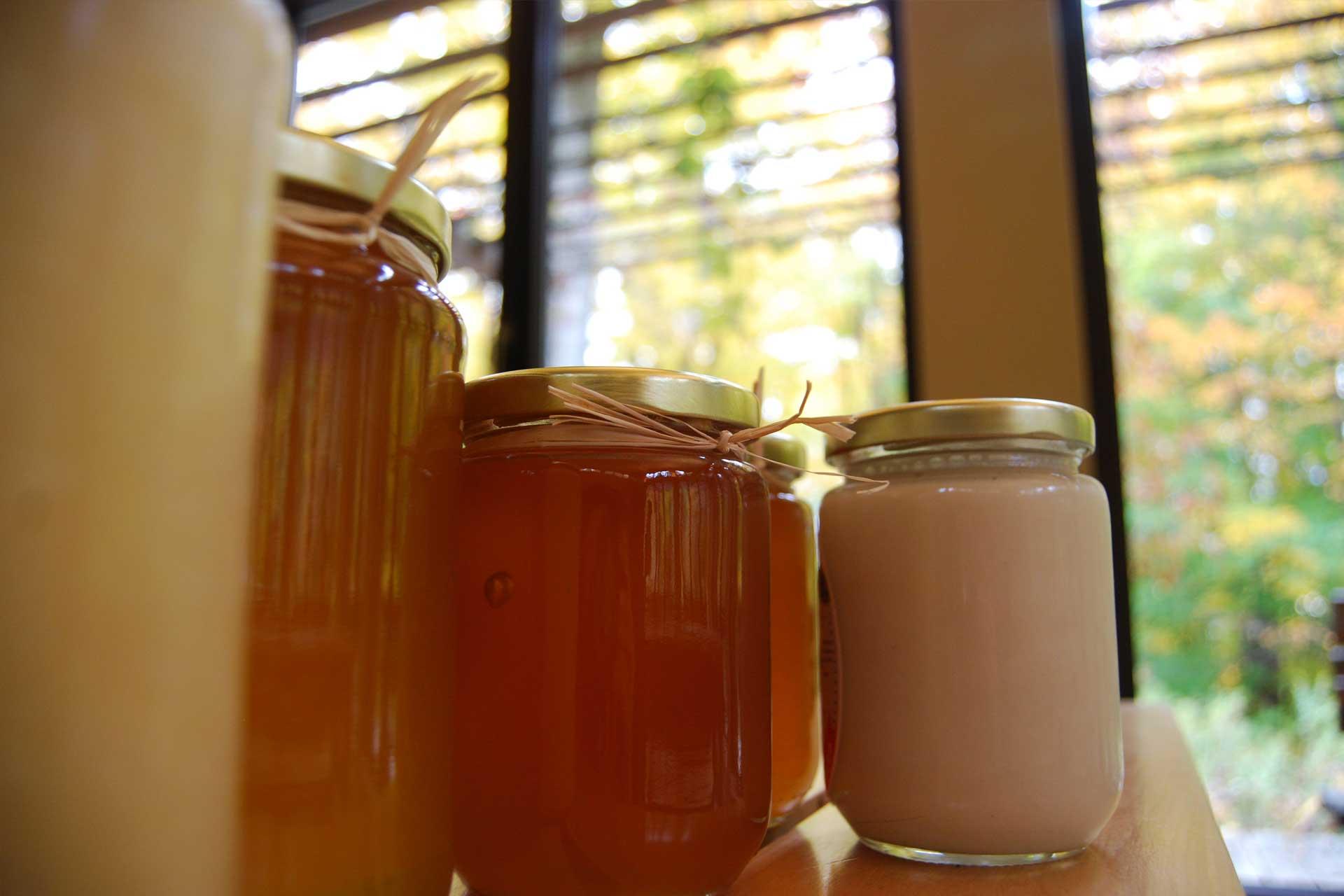Ensemble de pots de miel de différentes textures et couleurs