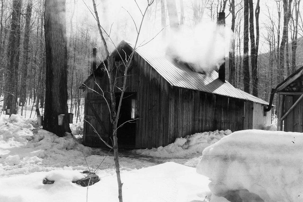 Au sein d'une érablière en hiver, cabane à sucre en bois depuis laquelle de la fumée s'échappe. Un abri d'entreposage de bois et un tas de bois posé à terre devant l'abri se trouvent à côté de la cabane.