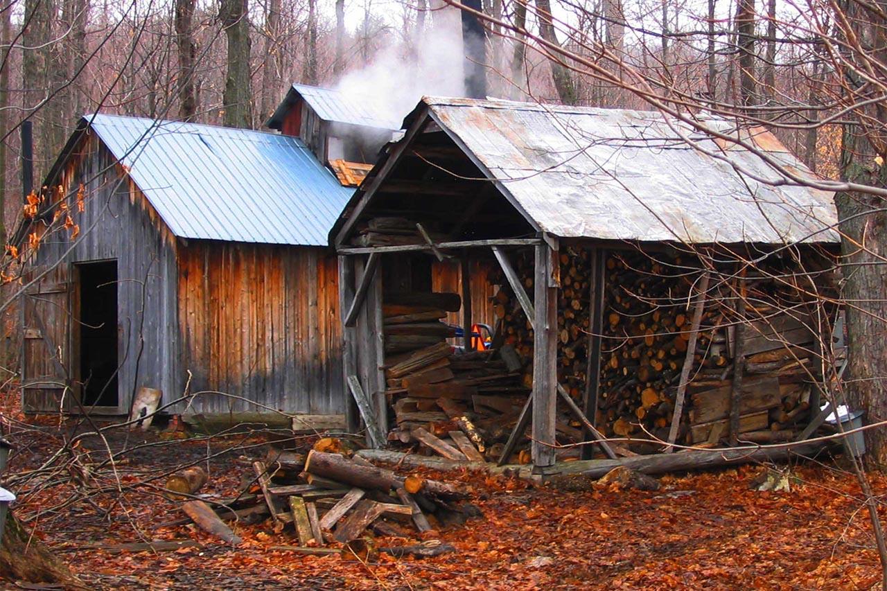Photographie en noir et blanc d'une cabane à sucre depuis laquelle de la fumée s'échappe. La forêt est enneigée, les arbres portent des chaudières d'eau d'érable.